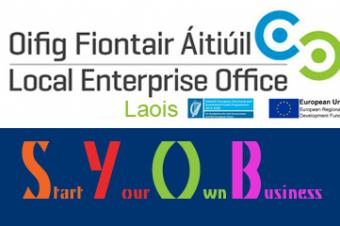 New Enterprise Initiatives in Irish Prison Education