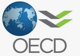 OECD: What will the future of education look like Q&A